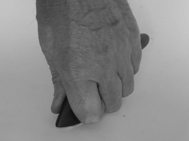 Peachey-Fig6